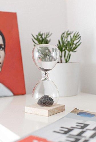 Kikkerland ST05 Sanduhr, Glas, transparent, 9 x 9 x 21 cm - 4