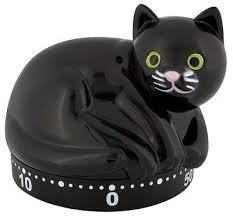 Pylonen 38, Timer Katze -